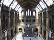 Natural History Museum London by Green Lane
